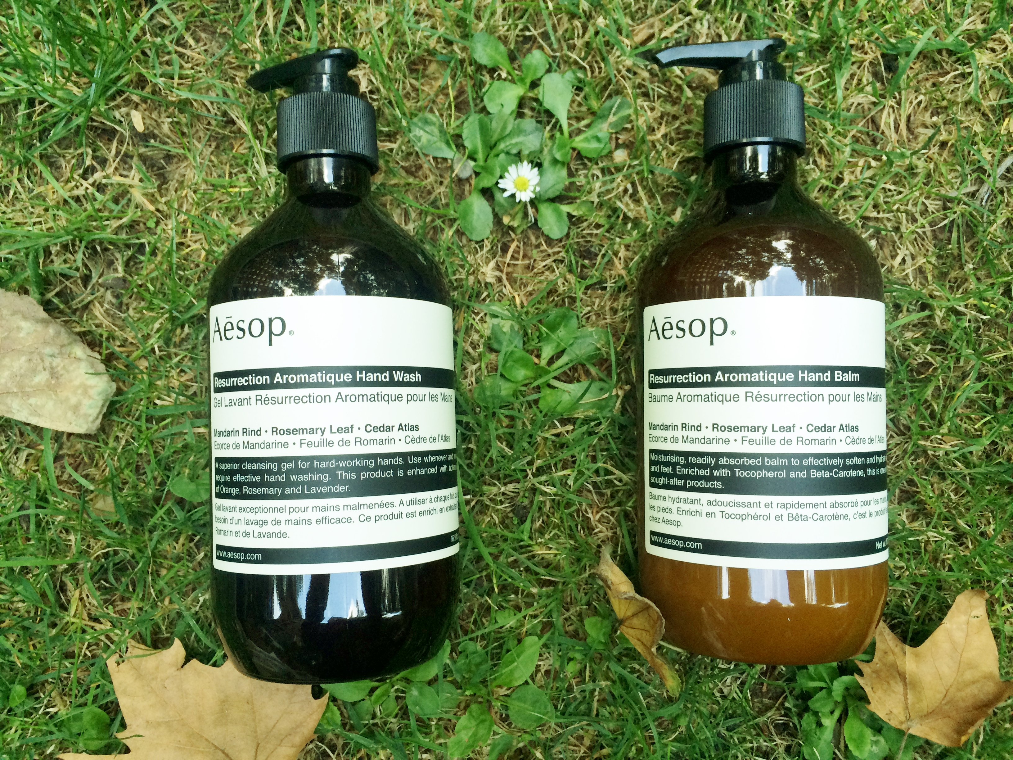 aesop review